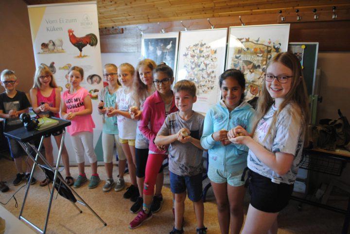 """Schulprojekt in Norken: """"Vom Ei zum Huhn"""""""