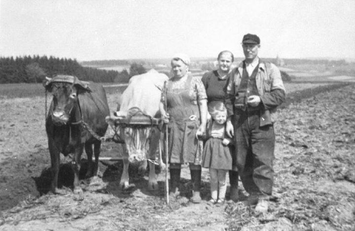 Ortsgeschichte Norken – ein kurzer historischer Überblick